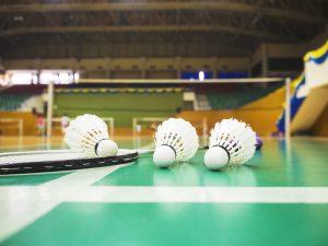 quadra-badminton